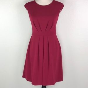 Maggy London Red Pleated A Line Dress